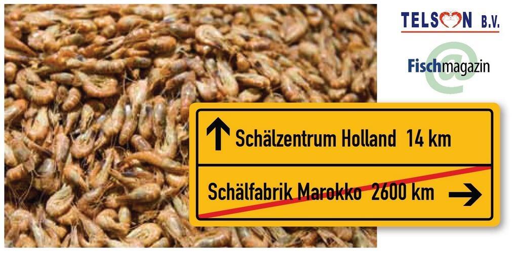 Schälzentrum Holland Fischmagazin 1/11/13